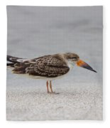 Black Skimmer Fleece Blanket