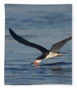 Black Skimmer Rynchops Niger Skimming Fleece Blanket