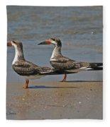 Black Skimmers On The Beach Fleece Blanket