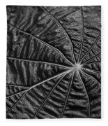 Black Star.. Fleece Blanket