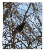 Black  Starling Fleece Blanket