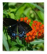 Black Swallow Tail On Beautiful Orange Wildlflower Fleece Blanket