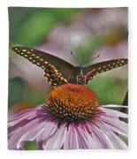 Black Swallowtail On Cone Flower Fleece Blanket