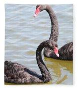 Black Swan Pair Fleece Blanket