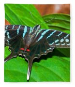 Black Swordtail Butterfly Fleece Blanket