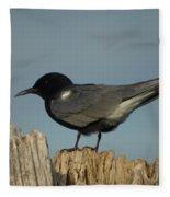 Black Tern Fleece Blanket