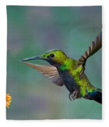 Black-throated Brilliant Fleece Blanket