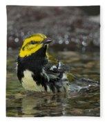 Black-throated Green Warbler Fleece Blanket