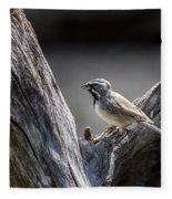 Black Throated Sparrow Fleece Blanket