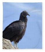 Black Vulture - Coragyps Atratus  Fleece Blanket