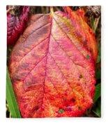 Blackberry Leaf In The Fall 3 Fleece Blanket