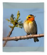 Blackburnian Warbler Fleece Blanket