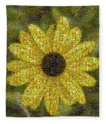 Blackeyed Suzy Mosaic Fleece Blanket