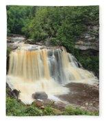 Blackwater River Falls West Virginia Fleece Blanket