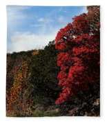 Blazing Maple Tree Fleece Blanket