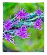 Blazing Star Fleece Blanket
