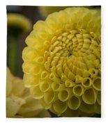 Blazing Yellow Dahlia Fleece Blanket
