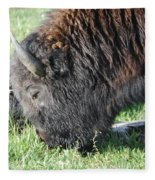 Blessed Bull Fleece Blanket