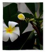 Blooming Frangipani Flower Alongside Bud Fleece Blanket