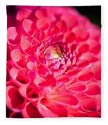 Blooming Red Flower Fleece Blanket by John Wadleigh