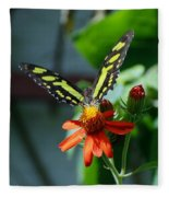 Blooms And Butterfly1 Fleece Blanket