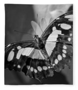 Blooms And Butterfly5 Fleece Blanket