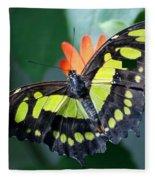 Blooms And Butterfly5c Fleece Blanket