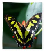 Blooms And Butterfly6c Fleece Blanket