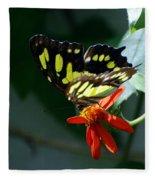 Blooms And Butterfly7c Fleece Blanket