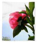 Blossom Bottom Fleece Blanket