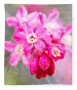 Blossoms Of Spring - April 2014 Fleece Blanket