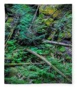 Blow Down Glacier National Park Painted Fleece Blanket