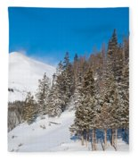 Blue And White Colorado Winter Fleece Blanket