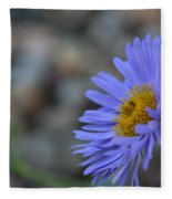 Blue Aster Fleece Blanket