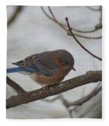 Blue Bird 201301 Fleece Blanket