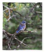 Blue Bird Perched Fleece Blanket