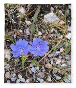 Blue Daisy Fleece Blanket