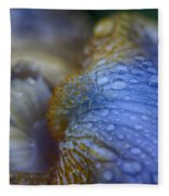 Blue Danube  Fleece Blanket