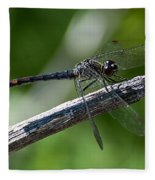 Blue Dragonfly 2 Fleece Blanket