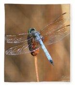 Blue Dragonfly Square Fleece Blanket