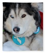 Blue Eye Brown Eye Fleece Blanket