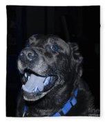 Blue Eyed Lab Smiling For The Camera Fleece Blanket
