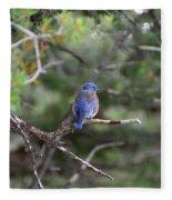 Blue Feathers Fleece Blanket