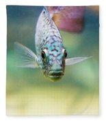 Blue Fish Fleece Blanket
