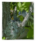 Blue-gray Gnatcatcher Nest Dsb261 Fleece Blanket