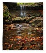 Blue Hen Falls In Autumn Fleece Blanket