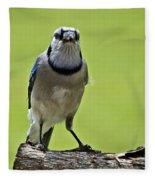 Blue Jay Meal Time Fleece Blanket