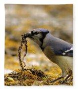 Blue Jay Nest Building Fleece Blanket