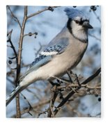 Blue Jay.. Fleece Blanket