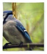 Blue Jay On A Misty Spring Day Fleece Blanket
